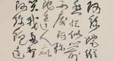 柳琴培训师招生简章